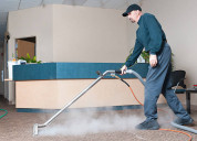 Why you need professional carpet cleaning service