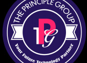The principle group - best rpo staffing agency in
