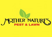 Insect exterminator in okc