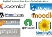 Open source consulting company in houston