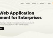 Custom web application development for enterprises
