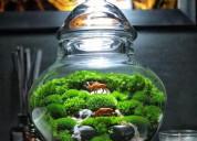Wholesale fairy gardens supplies,diy miniature gar