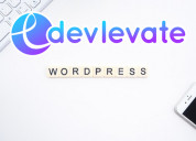 Devlevate web development